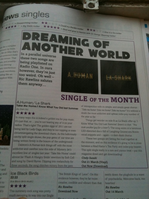 Artrocker Review